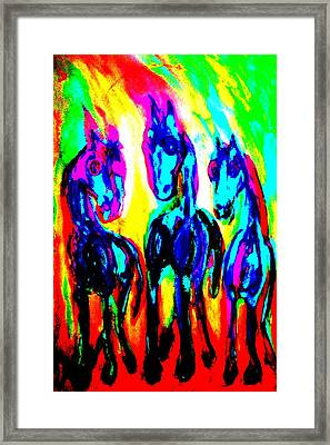 The Rainbow Stallions Don't Wanna Be Race Horses  Framed Print by Hilde Widerberg