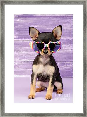 Rainbow Sunglasses Framed Print