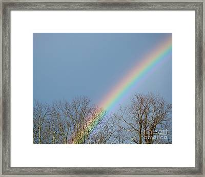 Framed Print featuring the photograph Rainbow Through The Tree Tops by Kristen Fox
