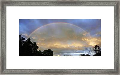 Rainbow Framed Print by Tony Cordoza
