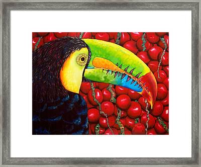 Rainbow Toucan Framed Print by Daniel Jean-Baptiste