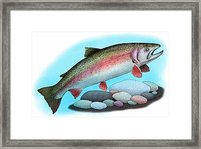 Rainbow Trout Framed Print by Roger Hall