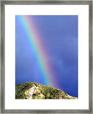 Rainbow Vi Framed Print