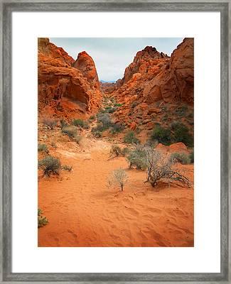 Rainbow Vista Trail Valley Of Fire Framed Print by Frank Wilson