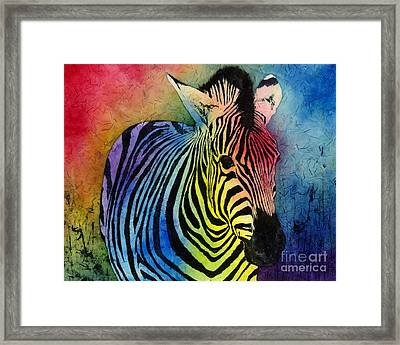 Rainbow Zebra Framed Print by Hailey E Herrera