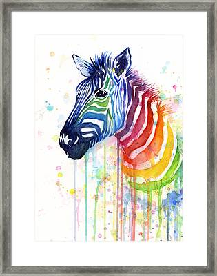 Rainbow Zebra - Ode To Fruit Stripes Framed Print by Olga Shvartsur
