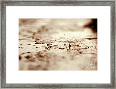 Raindrop Falling On The Street Framed Print by Dan Radi