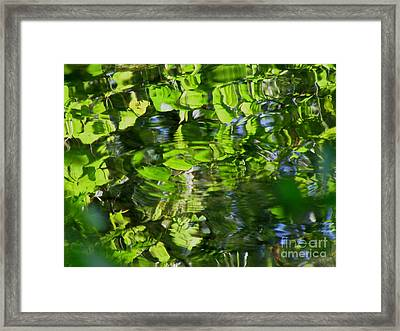Raindrop Framed Print by Fred  Sheridan