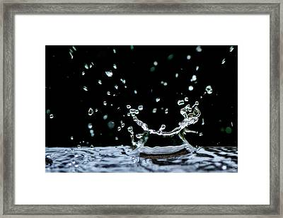 Raindrop Framed Print by Lisa Knechtel