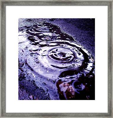 Raindrop Framed Print by Lucy D