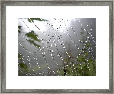 Framed Print featuring the photograph Raindrop Pearls In Fog by Diannah Lynch