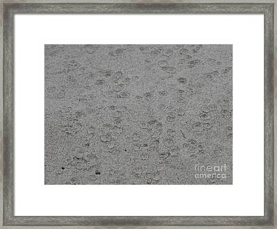 Raindrops In Sand Framed Print by Gayle Melges