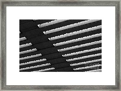 Raindrops Framed Print by Jim Rossol