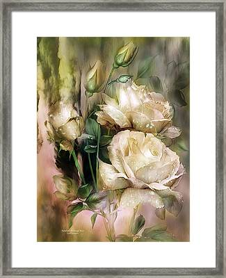 Raindrops On Antique White Roses Framed Print