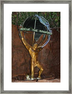 Framed Print featuring the photograph Rainforest Appeal by David Nicholls