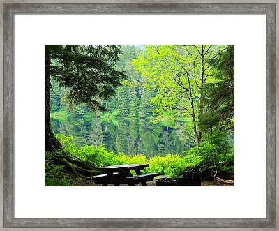 Rainforest Beauty Framed Print by Karen Horn