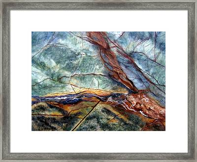 Rainforest I Framed Print