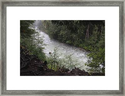 Rainforest River Framed Print by Amanda Holmes Tzafrir