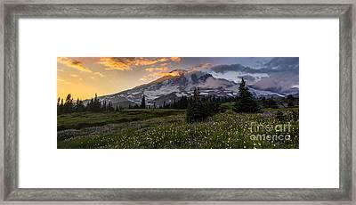 Rainier Meadows Splendor Framed Print by Mike Reid