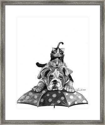 Raining Cats And A Dog Framed Print