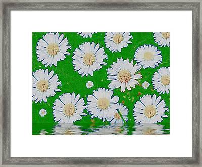 Raining White Flower Power Framed Print