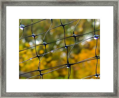 Rainy Autumn Morning Framed Print by Robert Mitchell