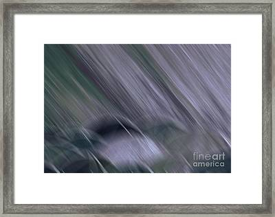 Rainy By Jrr Framed Print by First Star Art