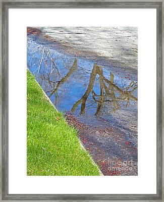 Rainy Day Aftermath Framed Print by Ann Horn
