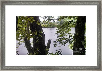 Rainy Day At The River Framed Print by Lisa Gifford