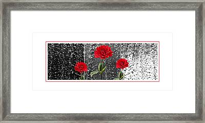 Rainy Day Dahlias Framed Print by Natalie Kinnear
