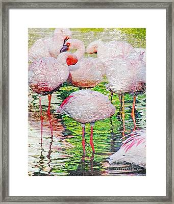Rainy Day Flamingos 2 Framed Print