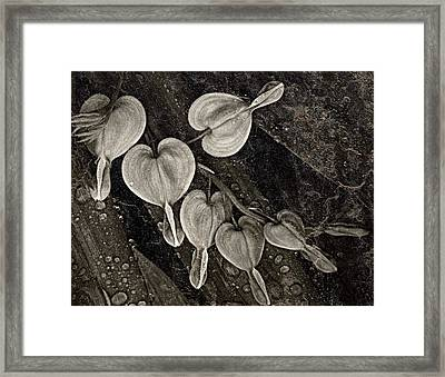 Rainy Day Hearts Framed Print by Chris Berry