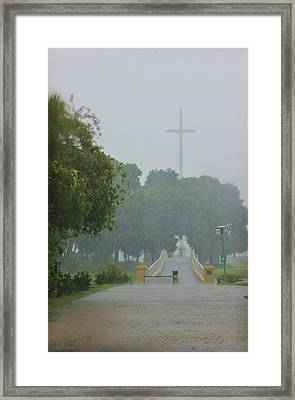 Rainy Day Framed Print by Iryna Goodall