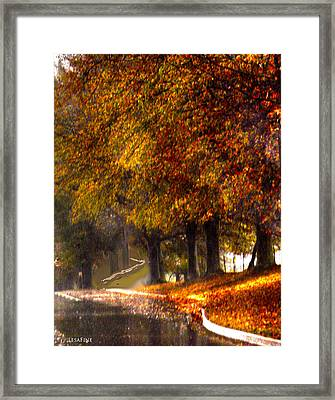 Rainy Day Path Framed Print