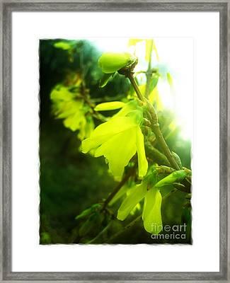 Framed Print featuring the photograph Rainy Dream by Nina Ficur Feenan