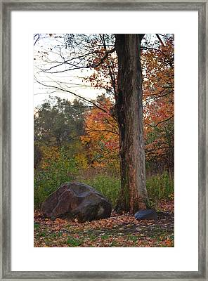 Rainy Fall Day Framed Print by Jennifer  King