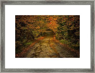 Rainy Fall Reflections Framed Print