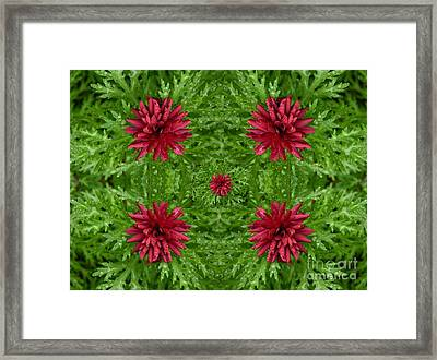 Rainy Flowers Kaleidoscope Framed Print