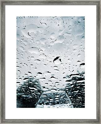 Rainy Framed Print by HD Connelly