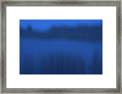 Rainy Lake With Bulrush, Scirpus Framed Print by Phil Schermeister