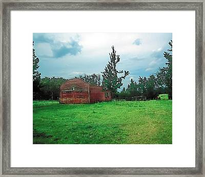 Rainy Pasture Framed Print by Terry Reynoldson