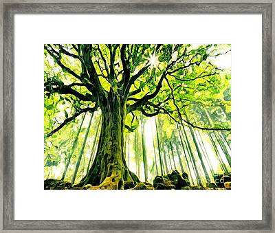 Raised By The Light Framed Print