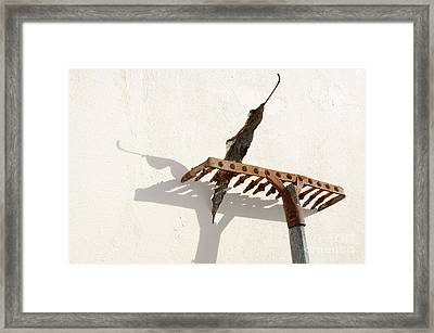 Rake With Leaf Framed Print by William Voon