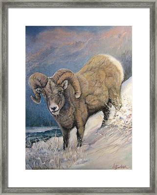 Framed Print featuring the painting Ram In The Snow by Donna Tucker