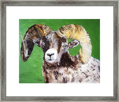 Ram Framed Print by Lucia Grilletto