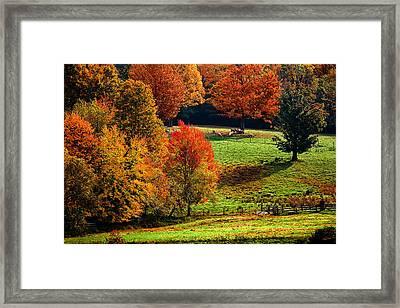 Ramblin' Fall Framed Print