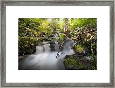 Ramona Creek Framed Print by David Gn