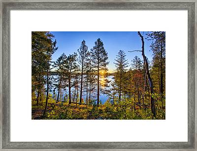 Rampart Framed Print by Thomas Zimmerman
