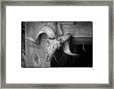 Ram's Head - Art Unexpected Framed Print by Tom Mc Nemar