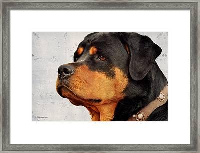 Ranch Dog On Watch Framed Print